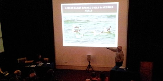 Cumbria Wildlife Recorders' Conference