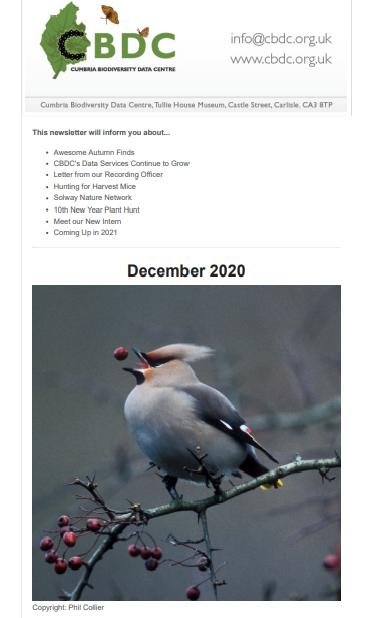 CBDC December 2020 Newsletter